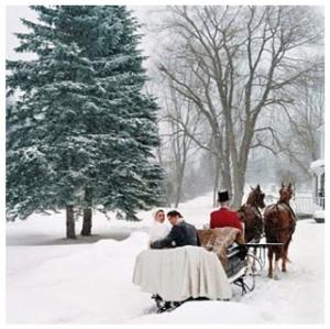 Winter Delight:  The Winter Wedding