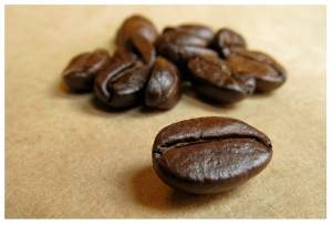 Nature's Gift Of The Coffee Bean