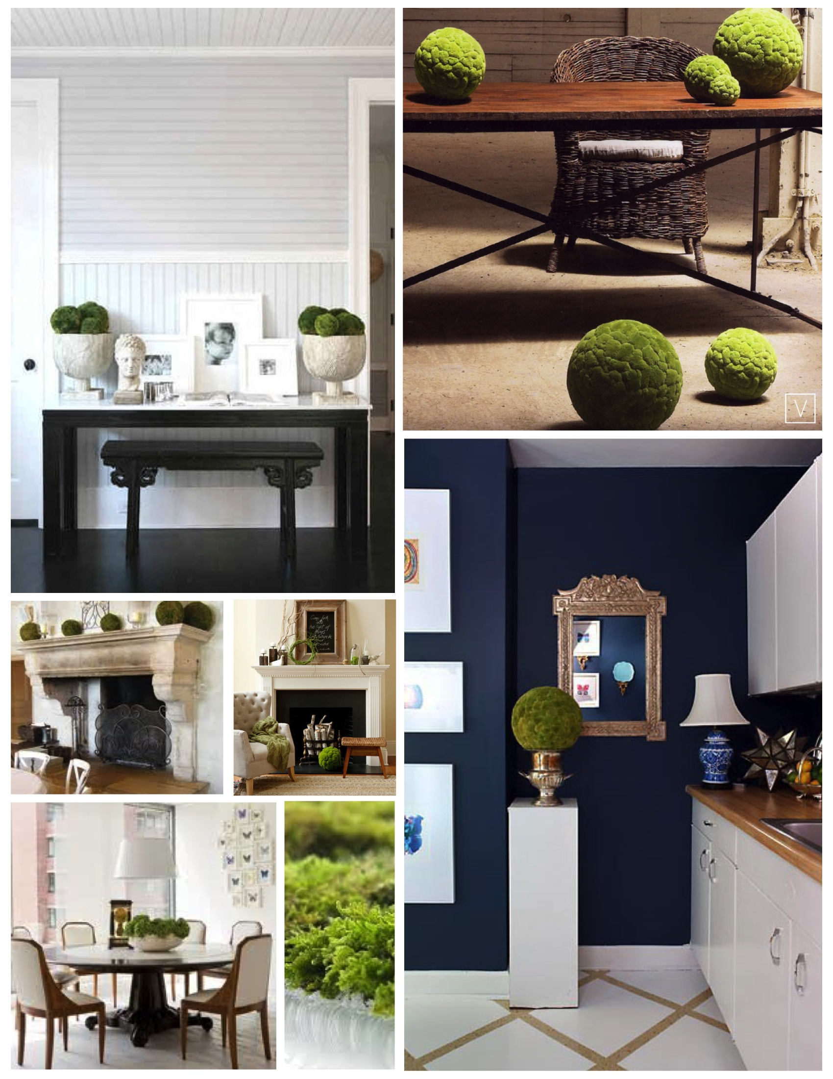 natural arrangements of green moss within the interior house