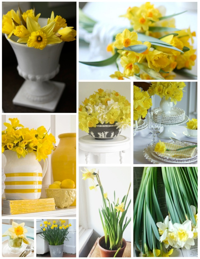"Interior ""Sunshine"":  The Embellishment of Yellow Daffodils"