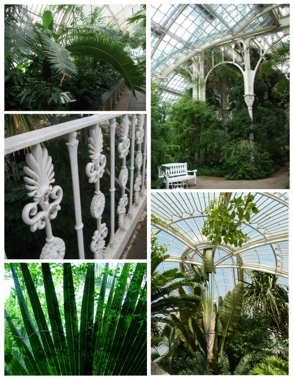 "Distinction On Display:  The Glory Of The Palm & The Beauty Of The ""Palm House"""