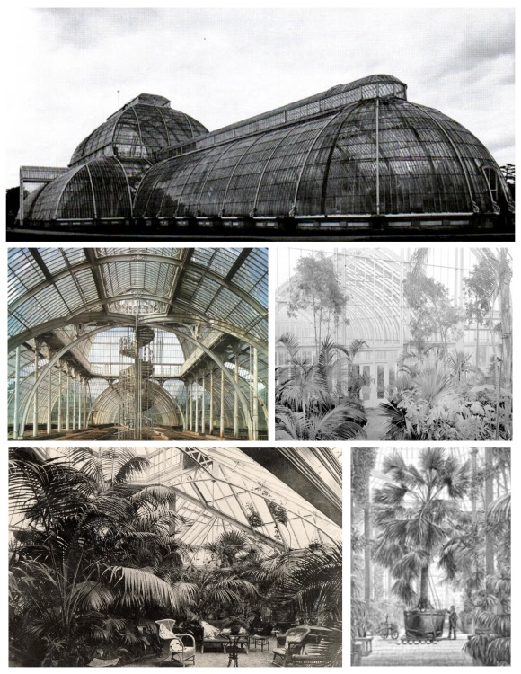 "Archived Images:  The ""Palm House"""