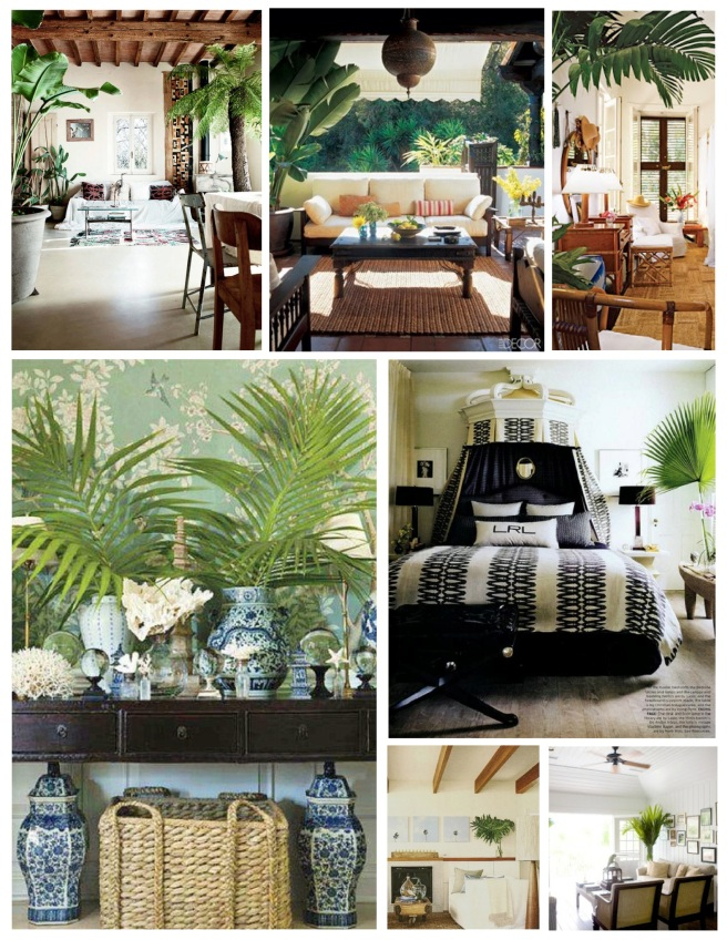 """Embellishment Of Exotic Cultivation:  The """"Palm"""" In The Interior"""