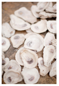 Nature's Beauty:  The Oyster Shell
