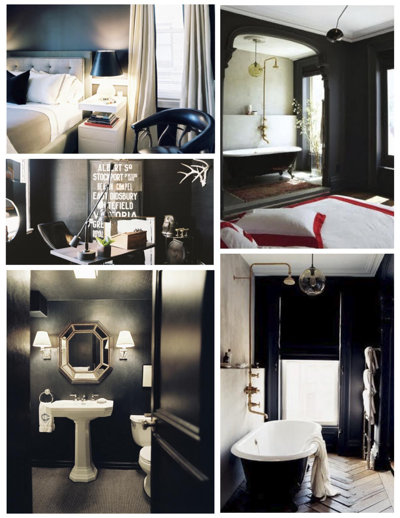 Phenomenal Interior Color Inspirations The Bold Dramatic Statement Download Free Architecture Designs Grimeyleaguecom