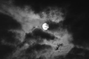 Full Moon Delight...