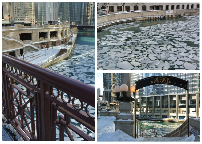 The Chicago River:  December's Icy Vision