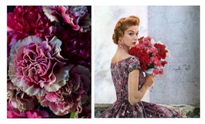 Timeless Floral Adoration:  The Classic Carnation