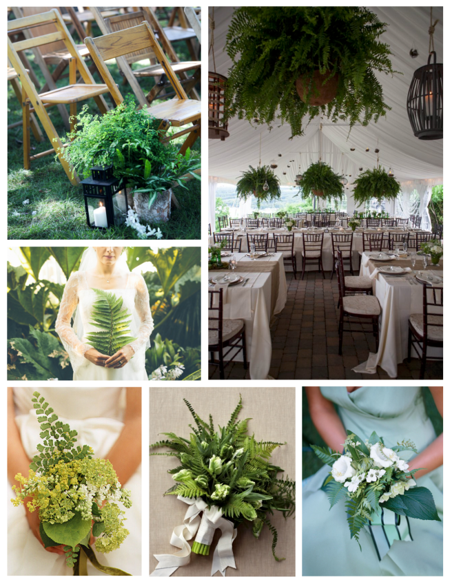 Memorable Events Embellished With Ferns