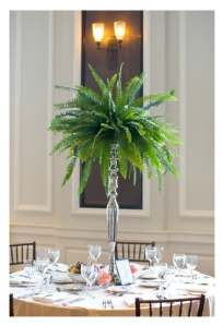 A Grand Centerpiece:  The Visual Statement Of Elegant Fern