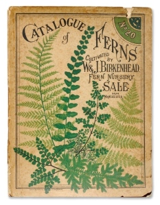 Vintage Representation Of Ferns