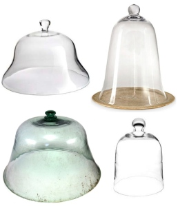 "The ""Cloche"":  Versatile Domed Glass"