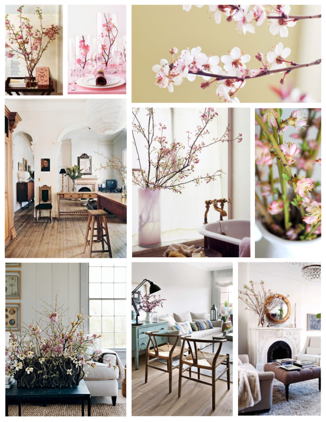 Hues Of Pink Blossoms:  Forced Branches Of Linear Style