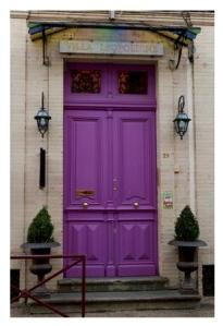 Vivid & Bold:  Painted Purple Delight