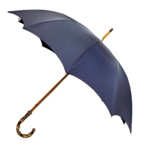 Form, Function & Style:  The Timeless Umbrella