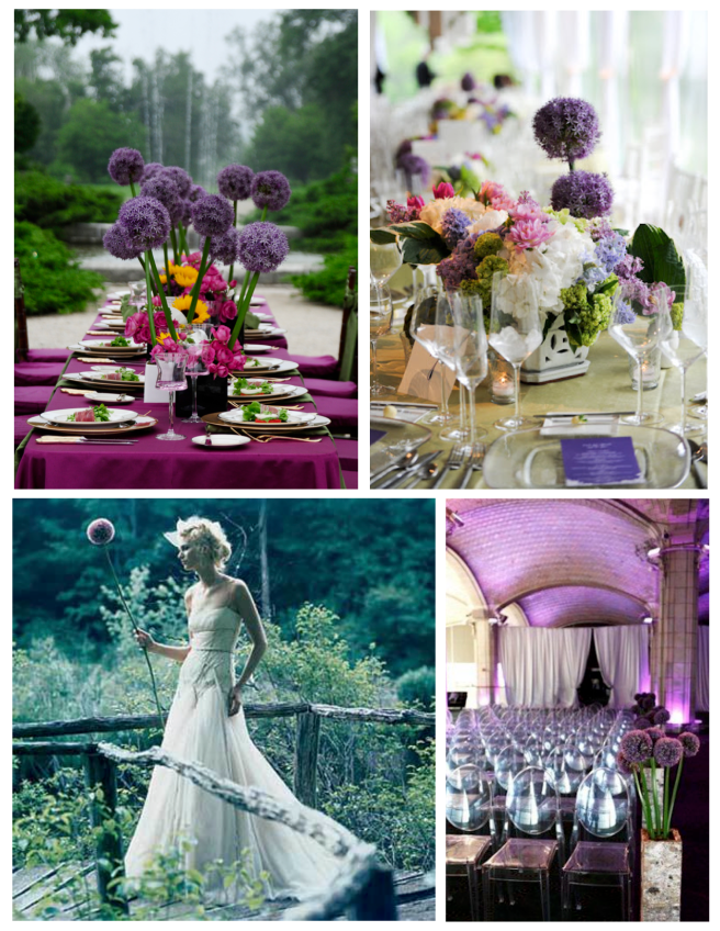 Memorable Events Paired With Perennial Delights:  The Towering, Magnificent Allium