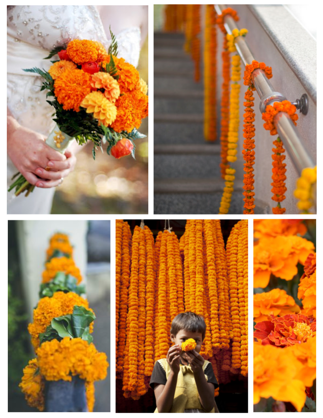 Layered Petals Of Vivid Delight: The Marigold As Decoration