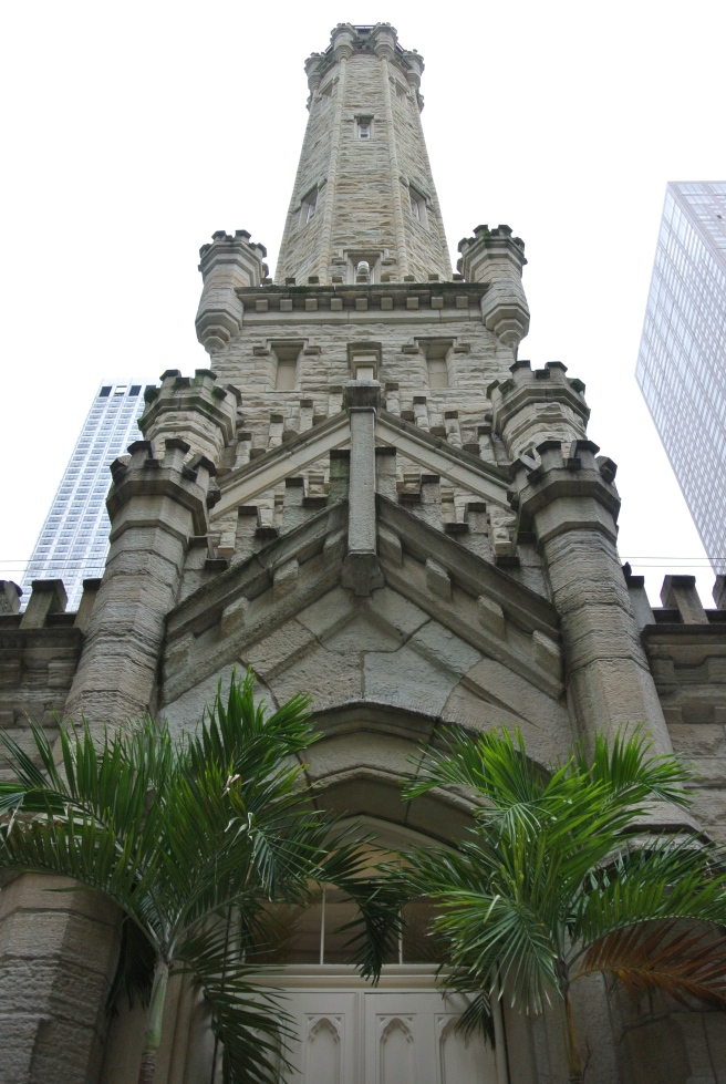 The Old Chicago Water Tower in July