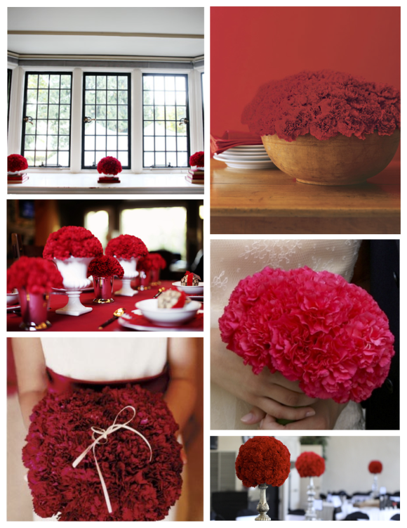 Frilled, Layered & Ruffled Elegance: The Magnificence Of The Scented Carnation
