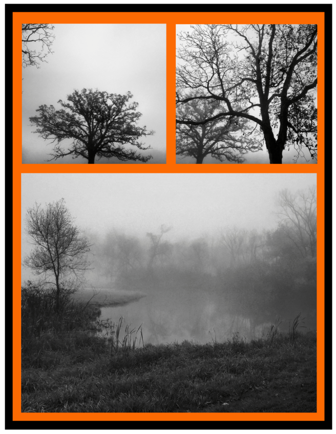Foggy Surrounds....Eerie Delights