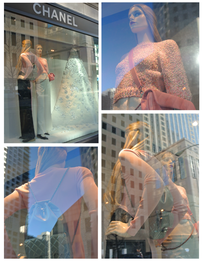 The Windows Of Chanel:  Snowfall In  Camellias