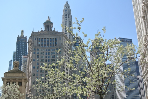 Chicago In April:  Visual Delights