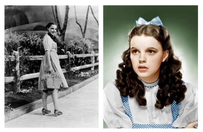 "The Iconic ""Wizzard Of OZ"" Gingham Dress"