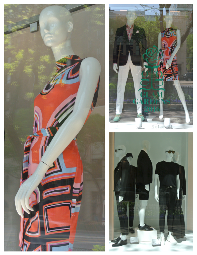 Window Scenes Of Fashionable Appeal