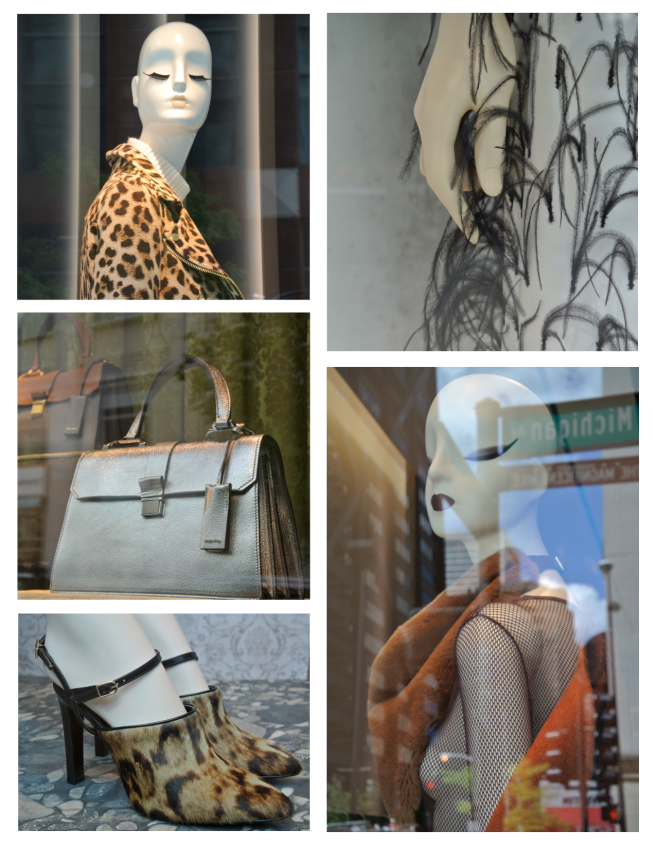 Chicago In August:  Fashionable Windows