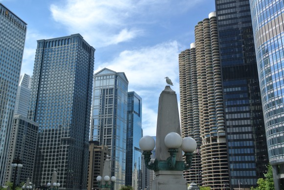 Chicago Visual Of Appreciation