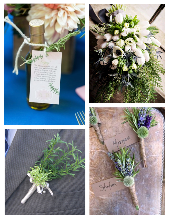 Wedded Delight With Rosemary Sprigs