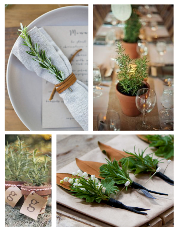 Natural Tabletop Inspiration Of Scented Delight:  Rosemary