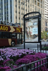 Fashionable Impressions On The City Street:  Michigan Avenue
